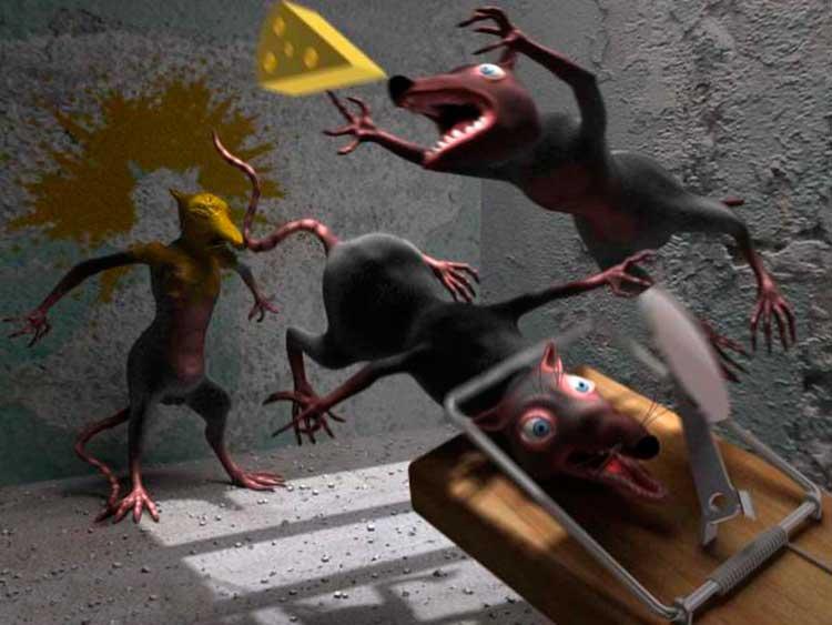 Капкан против крыс