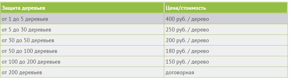 Цены на обработку деревьев от короеда