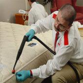 Дезинфекция помещений от туберкулеза