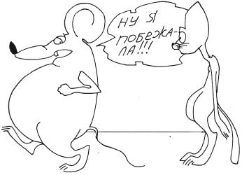 Мышь убегает от кота