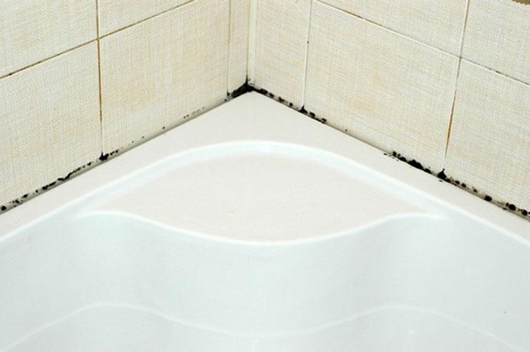 Плесень в ванной