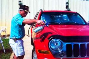Обработка автомобиля от насекомых