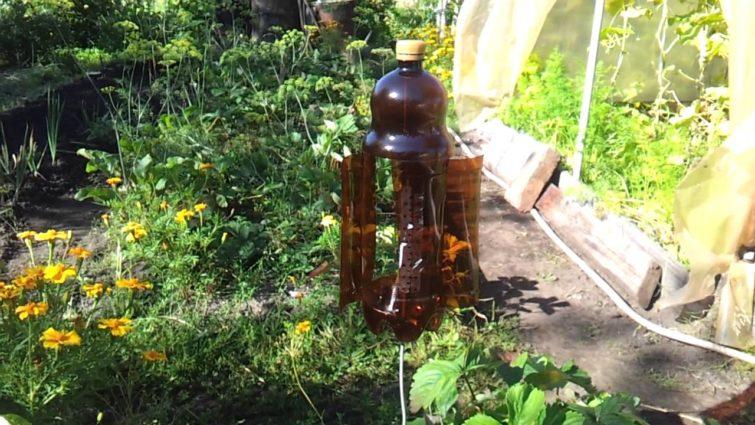 Самодельный отпугиватель кротов из пластиковой бутылки