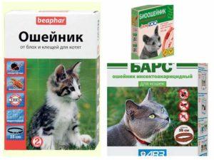 Ошейники от блох, для котов
