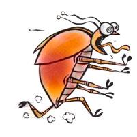 Мелки надежное средство от тараканов