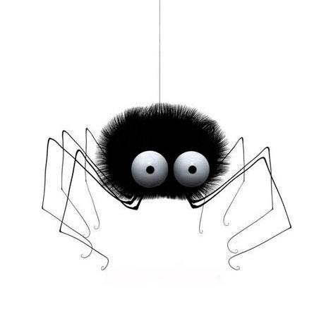 Почему нельзя убивать пауков. Убить паука — примета