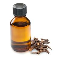 Гвоздичное масло от комаров