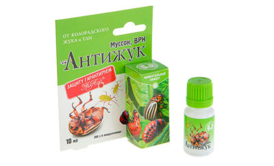 Средство от колорадского жука Антижук