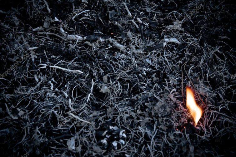 Применение пепла