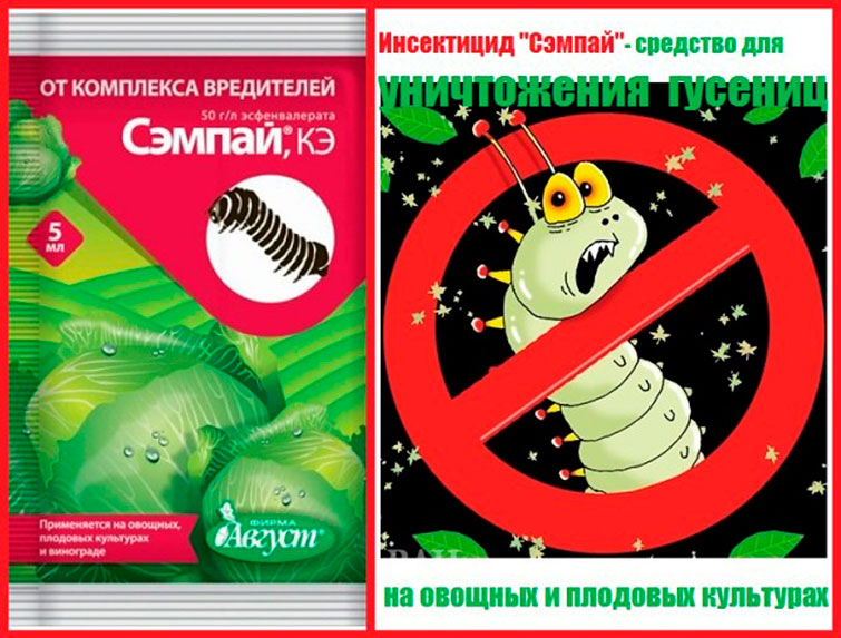 Инсектицид Сэмпай