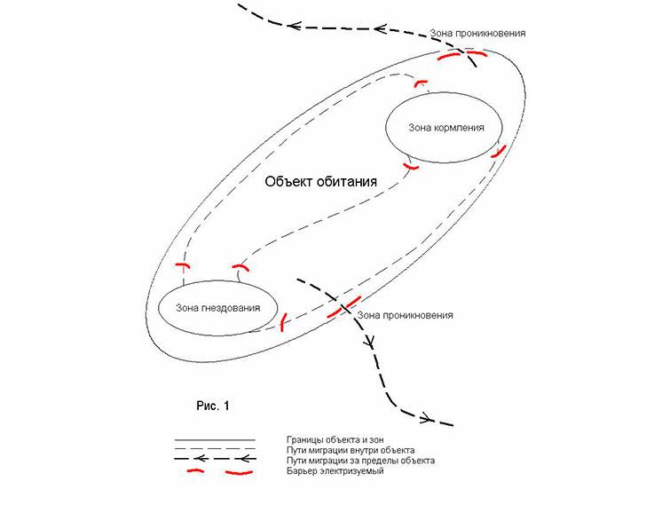 Схема ОЗДС