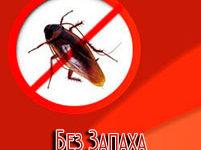 Компания «Без запаха» уничтожение насекомых Владивосток