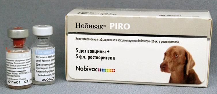 Нобивак Пиро