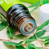 Поможет ли масло чайного дерева от плесени?