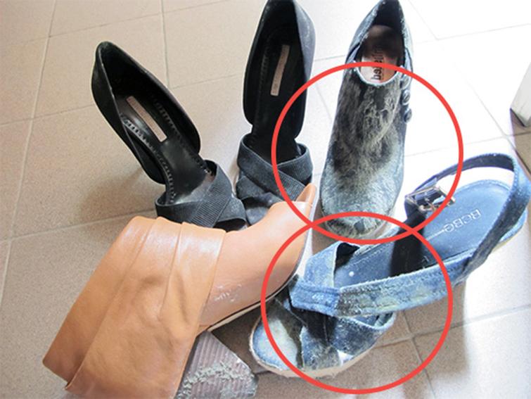 Причины появления плесени в обуви