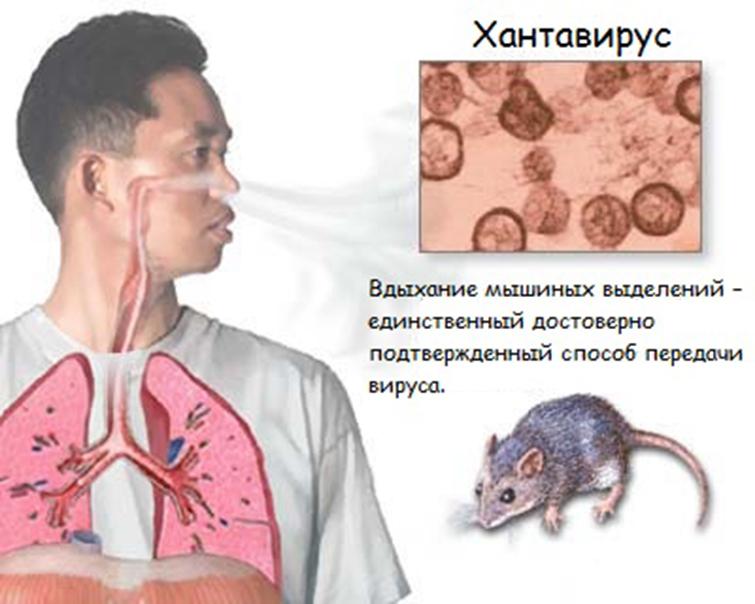 Как передается заболевание