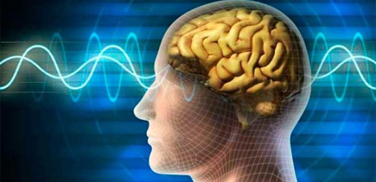 Воздействие ультразвука на здоровье человека и животных