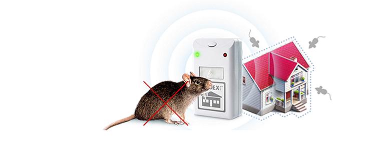 Электромагнитный отпугиватель грызунов