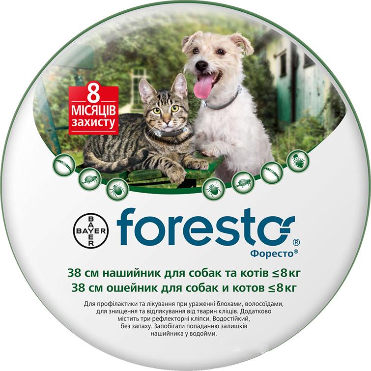 Bayer Foresto