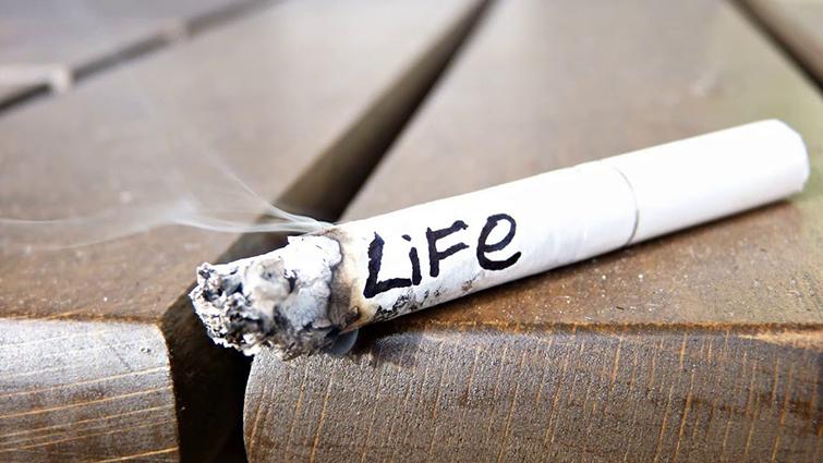 Почему табачный запах такой вредный