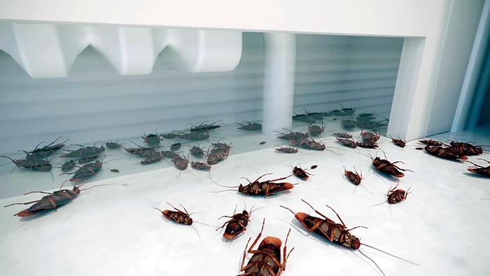 Применение ядов для тараканов