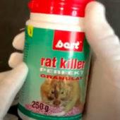 """""""Best Rat Killer"""" - отрава от грызунов с мумифицирующим эффектом (Видео)"""