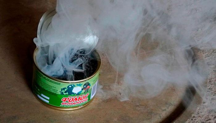 Процесс задымления инсектицидной шашки  «ФОМОР-антиплесень»