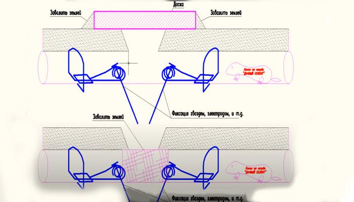 Схема размещения проволочных ловушек под землей при борьбе с кротом